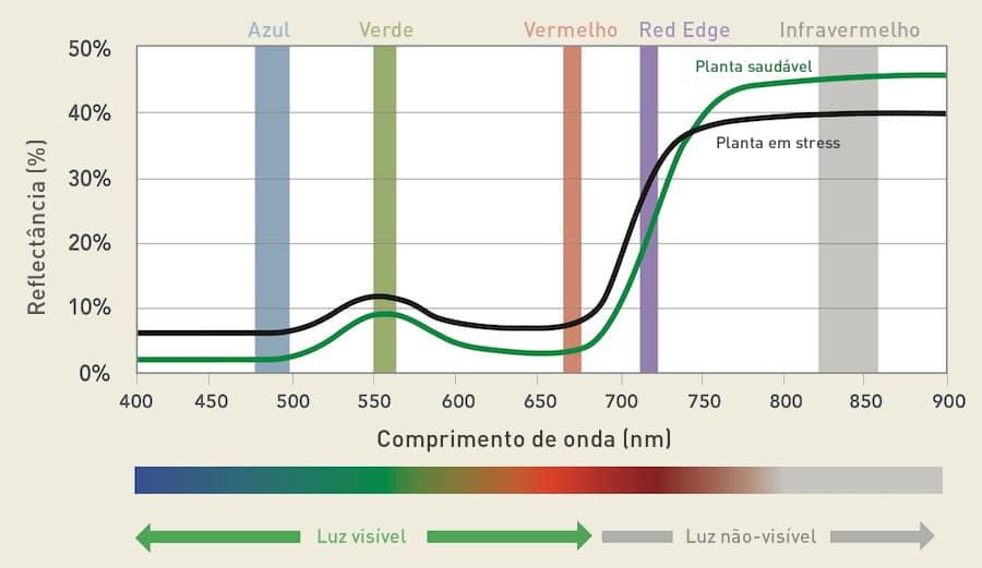 Comportamento da luz ao longo do espectro