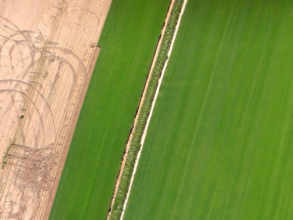 Apoio à agricultura via drone
