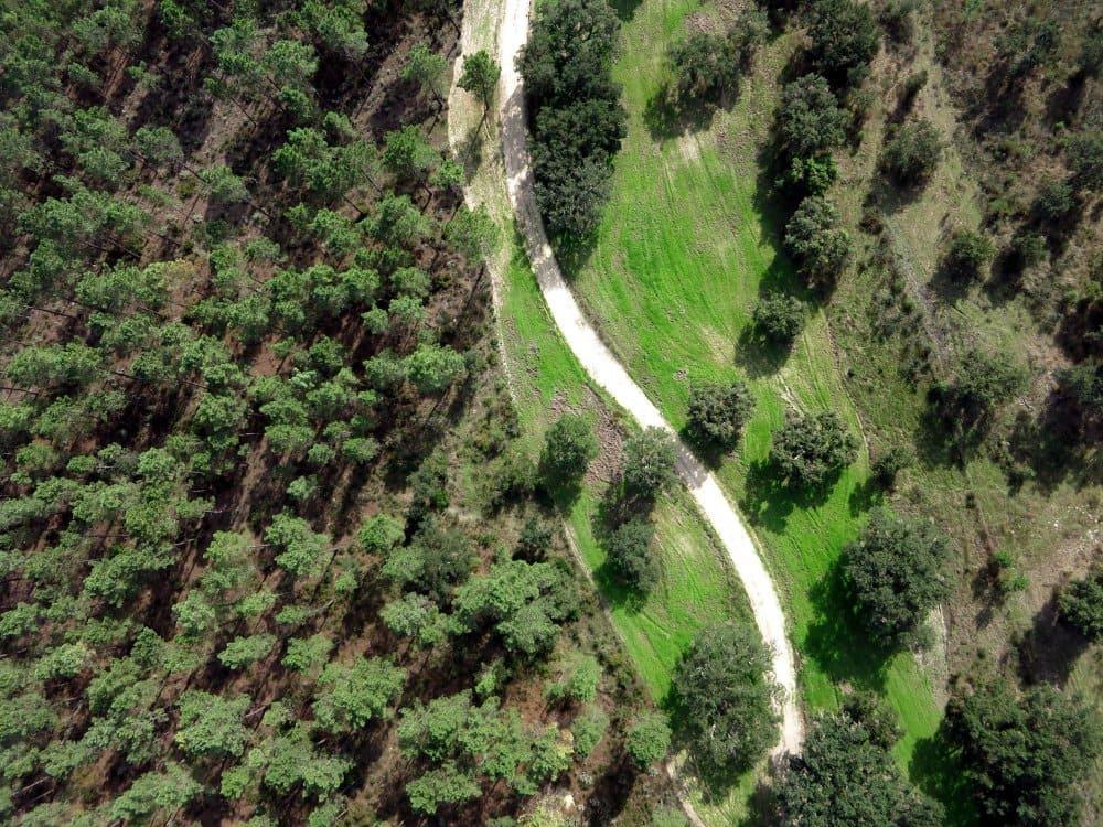 Monitorização via drone da Rede de Defesa da Floresta Contra Incêndios